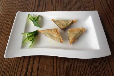 Spicy Chicken Triangles (3)